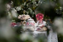 A tea set Royalty Free Stock Photography
