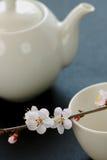 Tea sets Stock Image