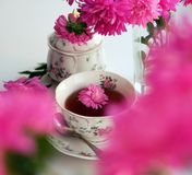 Rose tea, flowers, and dried petals royalty free stock images