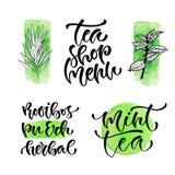 Tea shop menu vector calligraphic phrase for cover. Handwritten tea types for packaging design.  Royalty Free Stock Photos