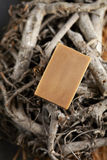 Tea soap Royalty Free Stock Photo