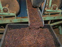 Tea sorting. Process on sorter on tea factory royalty free stock images