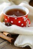 Tea with spices Stock Photos