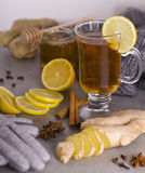 Tea with spices. Tea in cup with spices ginger, lemon, anise, cloves and clothing gloves Royalty Free Stock Photos