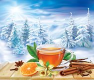 Tea with spices on a winter background Stock Image