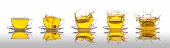 Tea splash collection Royalty Free Stock Image
