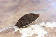 Tea spoon Stock Photography