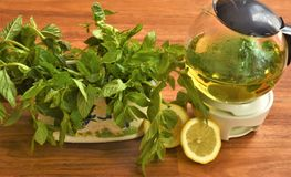 Tea and sprigs of mint. Mint tea in a glass transparent teapot, sprigs of mint and lemon wedges royalty free stock photo