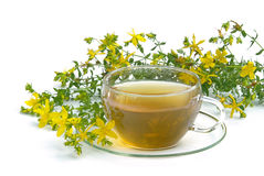 Tea St Johns wort 03 Royalty Free Stock Photos