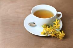 Tea with st. john´s wort Stock Photography