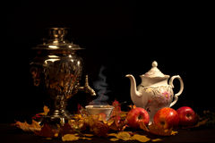 Tea still life. Stock Image