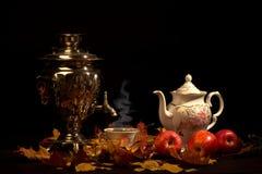 Tea still life. Stock Image