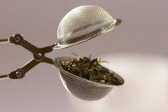 Tea strainer Royalty Free Stock Photo