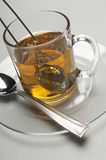 Tea Strainer Dipped In A Cup Royalty Free Stock Photo