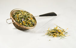 Tea-strainer full of herbs. Tea-strainer full of coloruful herbs, isolated on white Stock Image