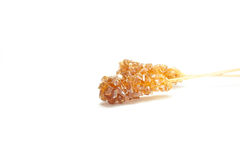 Tea sugar. Two pieces of tea sugar are isolated royalty free stock images