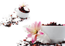 Tea with Sugar Flower Stock Photo