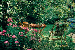 Tea table in owergrown garden Stock Photography
