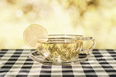 Tea on the tablecloth in garden Stock Images