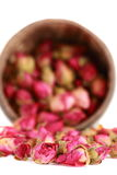 Tea from a tea-rose buds. Stock Image