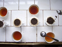 Tea testing room at a tea plantation in Sri Lanka Stock Images
