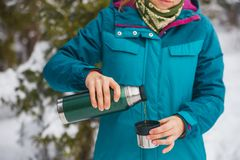Tea from a thermos in the winter cold forest stock photos