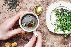 Tea with thyme Stock Photo