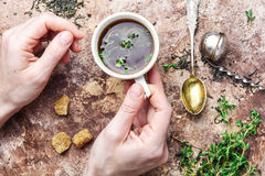 Tea with thyme Stock Photography