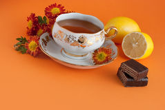 Tea time. Cup of tea with fresh lemon Royalty Free Stock Photos
