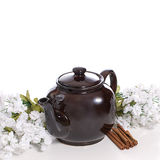 Tea Time. An old fashioned tea pot with some cinnamon and white flowers Stock Photography