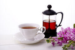 Tea time. Tea and stock on white background Stock Images