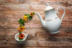Tea time concept. royalty free stock images
