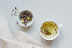 Tea time. Cup of hot herbal tea and dry tea on the gray background, top view.  stock photos