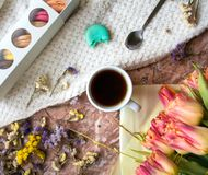 Tea time flat lay with cup of tea, pink tulip  and macaroons Royalty Free Stock Image