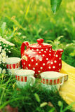 Tea time in the garden Royalty Free Stock Image