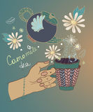 Tea time illustration with flowers and teapot Stock Images