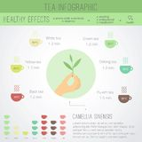 Tea time infographics. The health benefits, cooking, icons of cups in flat style vector illustration