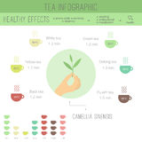 Tea time infographics Stock Photo