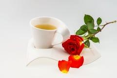 Tea time,orange rose theme Royalty Free Stock Image