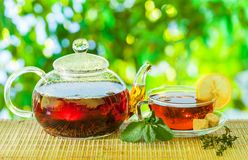 Tea time. Pouring out hot tea into a cup. Green nature backgroun royalty free stock photos
