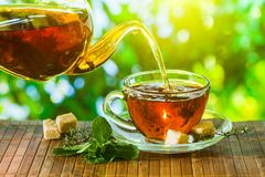 Tea time. Pouring out hot tea into a cup. Green nature backgroun stock photo