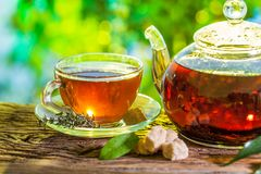 Tea time. Pouring out hot tea into a cup. Green nature backgroun royalty free stock photography