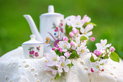 Tea time in the spring garden with tree blossom Stock Photo