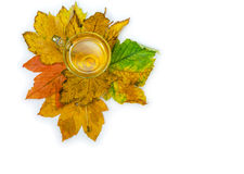 Tea in a transparent cup atop autumn maple leaves Stock Photo