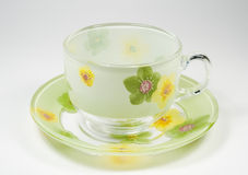 Tea transparent cup on a saucer with an ornament f. Rom green colours royalty free stock image