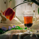 Tea in a transparent cup Royalty Free Stock Images