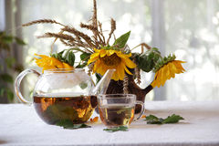 Tea in a transparent teapot and sunflowers in a ceramic vase. Still-life with tea in a transparent cup and sunflowers in a vase Stock Photos