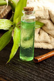 Tea Tree Essence stock photos
