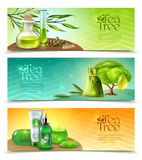 Tea Tree Horizontal Banners Royalty Free Stock Photography