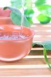 Tea tree oil Stock Photography